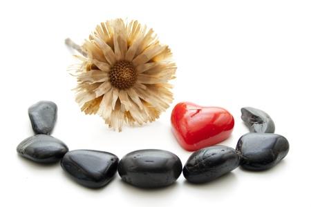 bougie coeur: Fleur de paille avec une bougie coeur Banque d'images