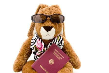 Rabbit with passport photo