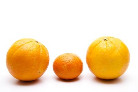 mandarins: Orange and mandarins