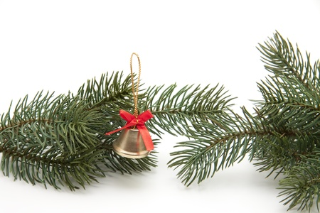 little bell: Fir branch with little bell Stock Photo