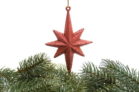 Christmas star with fir branch photo
