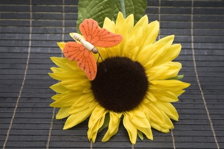 Sunflower with butterfly Stock Photo - 13163887