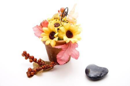 Sunflower in flowerpot Stock Photo - 13259664