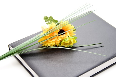quoted: Sunflower on notebook