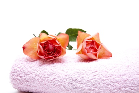 towelling: Hand cloth with rose