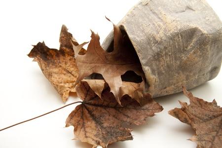 autumnally: Stone vase with autumn foliage