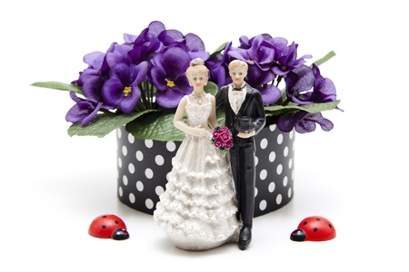 Bride and groom with wooden beetle Stock Photo - 13366586