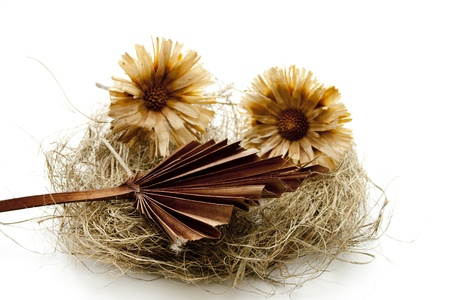 Hay nest with straw flower Stock Photo - 13482966