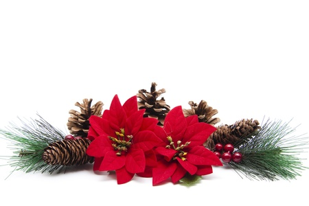 pine branch: Christmas star with pine branch