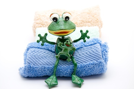 towelling: Frog with towelling cloth