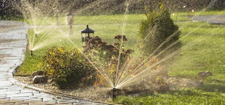 裏庭に水を噴霧する回転スプリンクラー 写真素材
