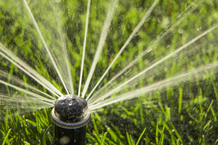 A rotating sprinkler spraying a water into the backyard Stock Photo