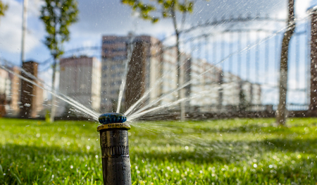 automatic sprinkler system watering the lawn on a background of green grass