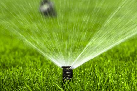système d'arrosage automatique arrosant la pelouse sur un fond d'herbe verte