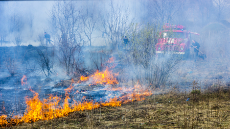 A car and a group of firefighters extinguish the fire on a dried-up meadow