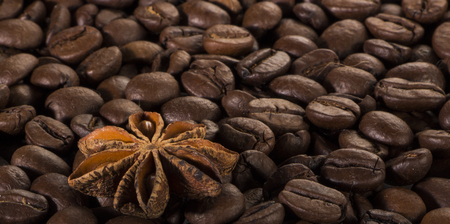 star anise, on the background of coffee with beautiful highlights on the surface of grains. Stock Photo