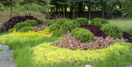 A neat colored well maintained garden in Japanese style