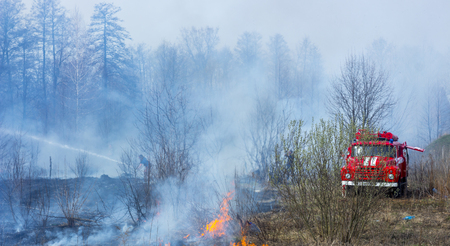 A car and a group of firefighters extinguish the fire on a dried smoked burning meadow.