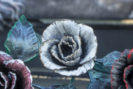 Decorative ornamen with roses, made from metal. Details, structure and ornaments of forged iron gate.