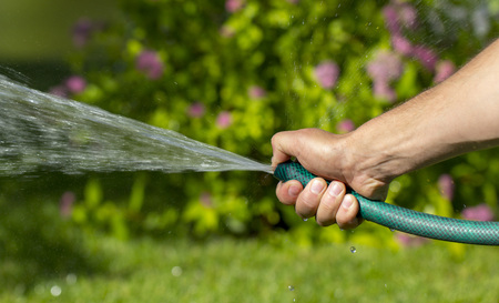 Man watering garden with hose, close up 写真素材