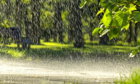 Drops of warm summer rain, falling on the asphalt close up Foto de archivo