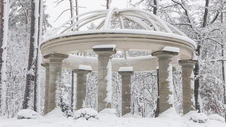 Beautiful colonnade in a snowy park, Bucha Ukraine