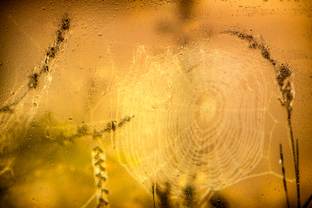Water droplets on a window pane with beautiful defocused scenery outside. Background