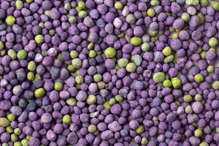 Purple mineral fertilizer, prolonged action with microelements, for application to the lawn in the spring. Professional fertilizer. Texture Standard-Bild - 122328970