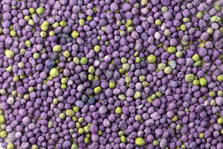 Purple mineral fertilizer, prolonged action with microelements, for application to the lawn in the spring. Professional fertilizer. Texture Standard-Bild - 122328972