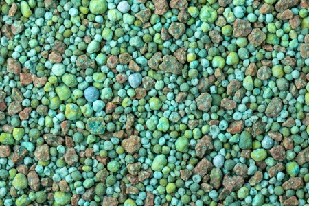 green mineral for coniferous plants, with microelements fertilizer texture background. Standard-Bild - 122329042