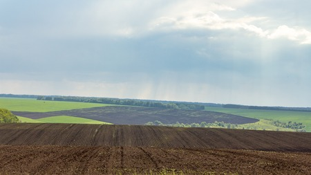 Rain over the agricultural fields, heavy stormy clouds slowly water fields. Background