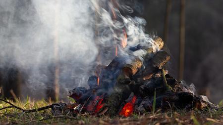 Falò nella foresta in vacanza. Concetto di rischio di incendio Archivio Fotografico