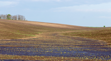 Agrarian fields after heavy rain, deposits of chernozem and various debris on the field.