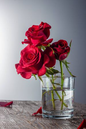 Red rose in vase on old wooden, Vintage style Фото со стока