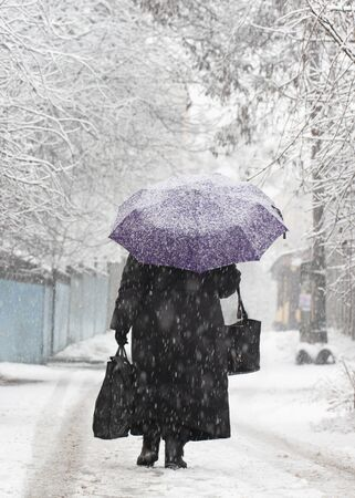 Snow on people on umbrellas who walk down the street during a snowfall