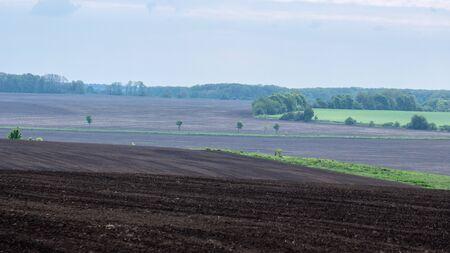 Black fertile soil on a sprinkled spring field.