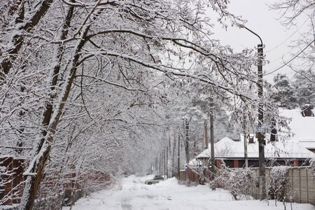 Snow-covered rural street, beautiful winter landscape, in cloudy weather background