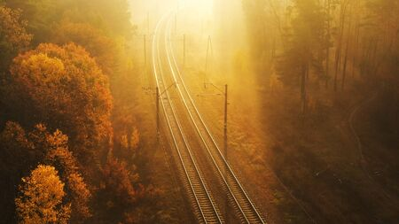 the railway canvas runs through the morning autumn forest. The suns rays cut through the fog. Foggy autumn forest.