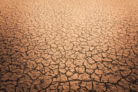The impact of global warming on sun-cracked soil and the loss of all fauna and flora. Foto de archivo