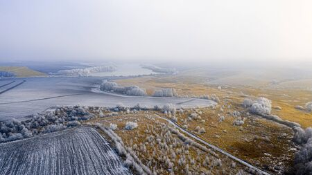 Beautiful winter landscape, yellow reeds on a snowy meadow. Pine and deciduous forests are covered with hoarfrost, and empty agrarian fields. Blue sky with light clouds on the horizon. Christmas landscape.