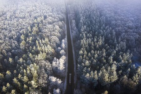 Drone view, snow-covered forest road, with pine trees in hoarfrost on both sides.