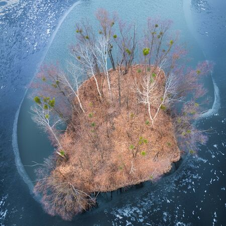 A small island with trees without leaves and orange dry vegetation, in the center of Hammers Lake, drone view. 版權商用圖片