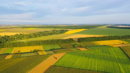 Agrarian fields with different shapes, sown with different agrarian crops, some already ripe and ready to harvest. Aerial view. 写真素材