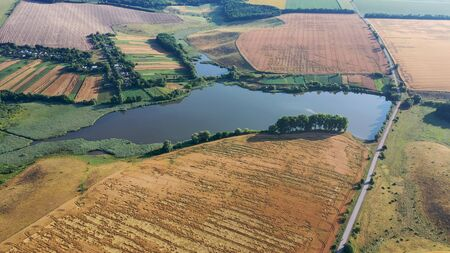 Summer landscape. Wheat harvest time. Aerial view of the grasslands, and a small lake with forest strips.