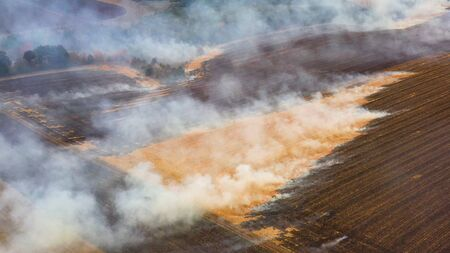 Farmers burn organic residues in the fields where they harvested corn, thus causing irreparable damage to the environment.