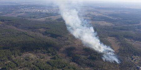 Fire in the forest, Zhytomyr region, Ukraine. Spring 2020. Stockfoto