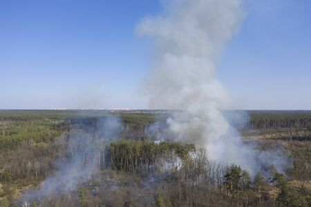 Aerial view of extensive fires in the Zhytomyr region, Ukraine. Large areas of many hectares of forest are covered by forest fires, burning peatlands. Aerial view.