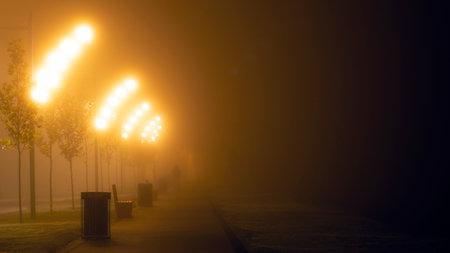lanterns on the street of the night city in the fog. 免版税图像