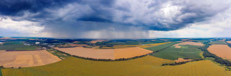 The thunderstorm threatens to destroy the sown wheat on the field. Heavy rain clouds hang over the wheat field.