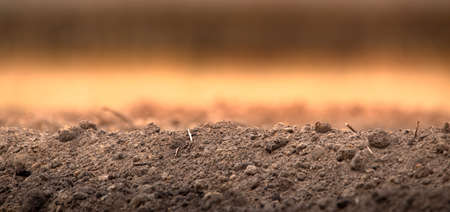 Fresh soil on a plowed field. Panorama. Imagens